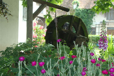 Mühlenhofgarten